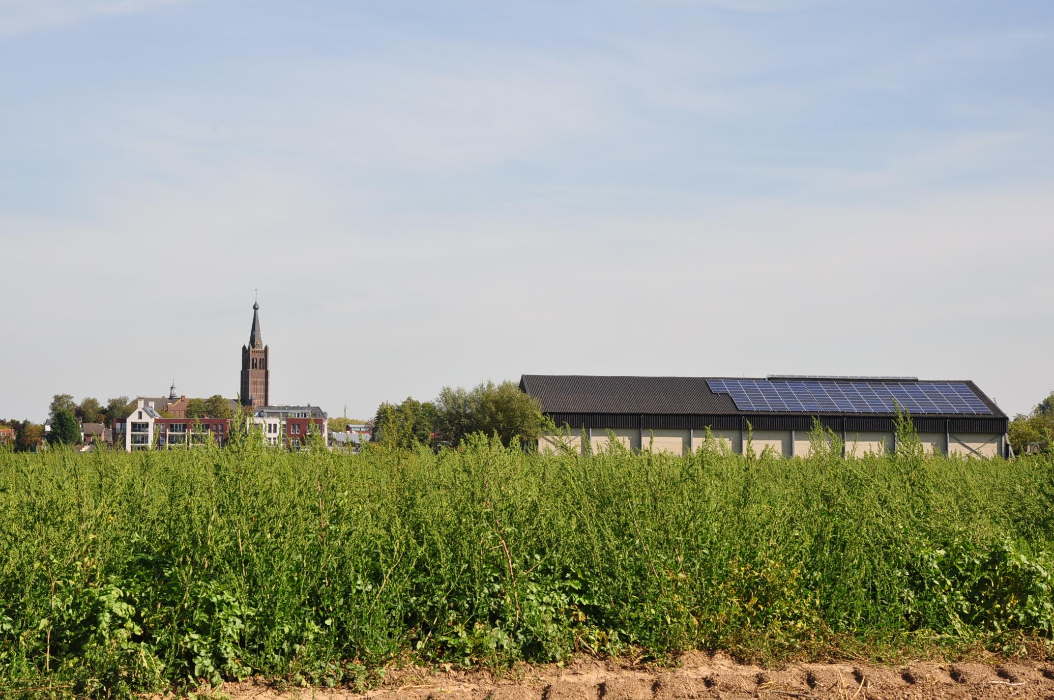 Wél zonnepanelen, maar niet op je eigen dak? Dat kan!