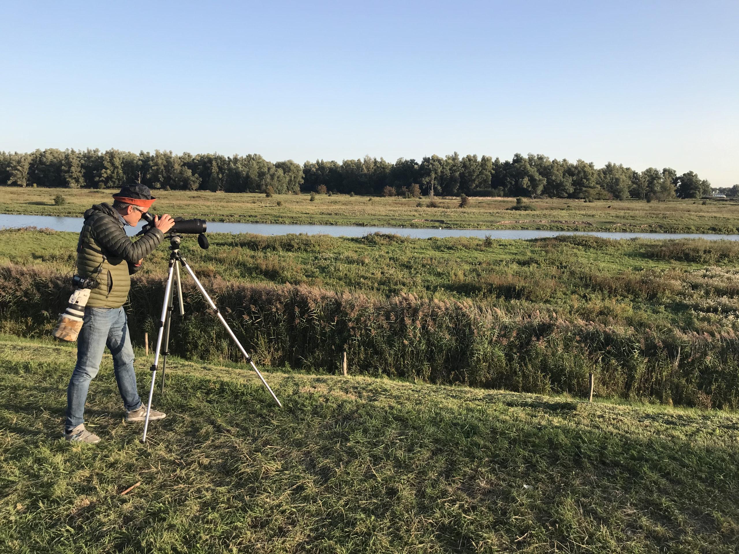 Beleef de Vogeltrek op de Groesplaat bij Woudrichem